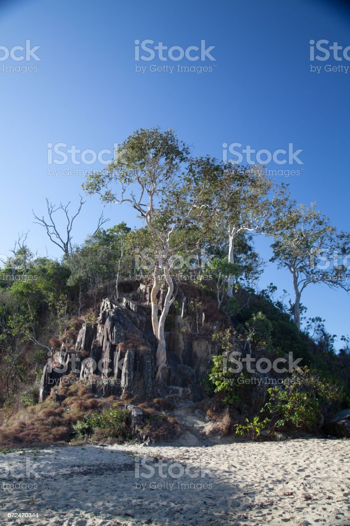 Australia, nature stock photo
