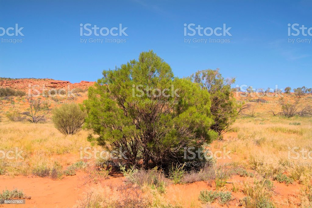 Australia, Northern Territory stock photo