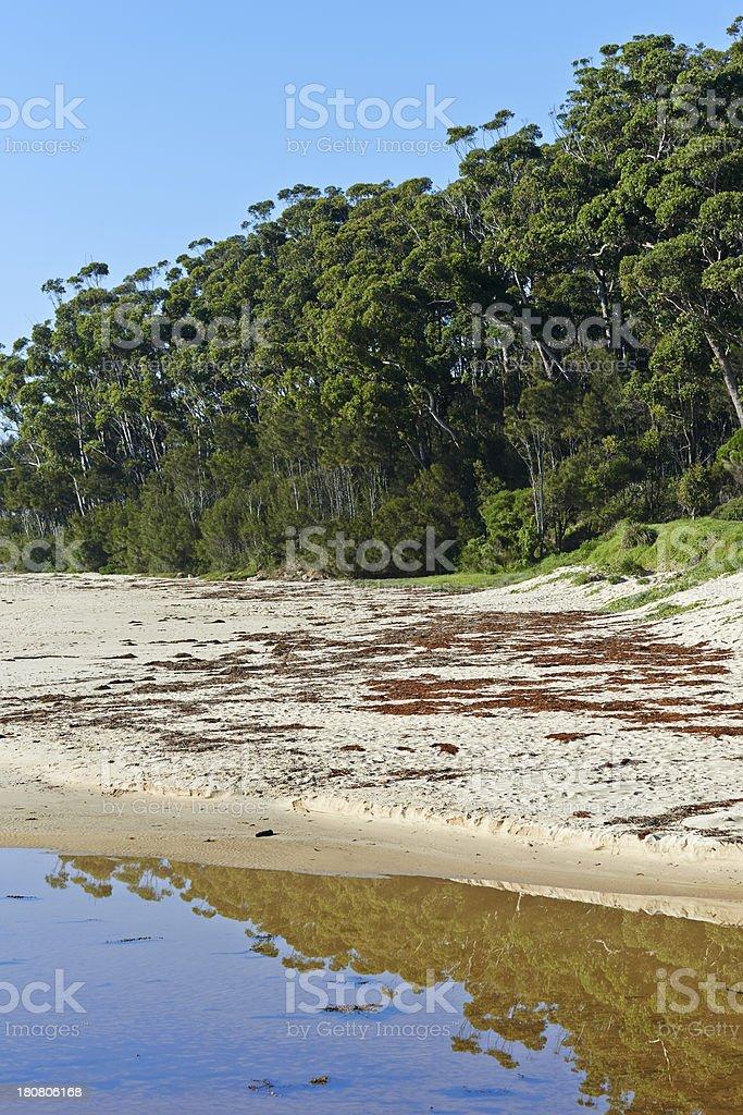 Australian Beach royalty-free stock photo
