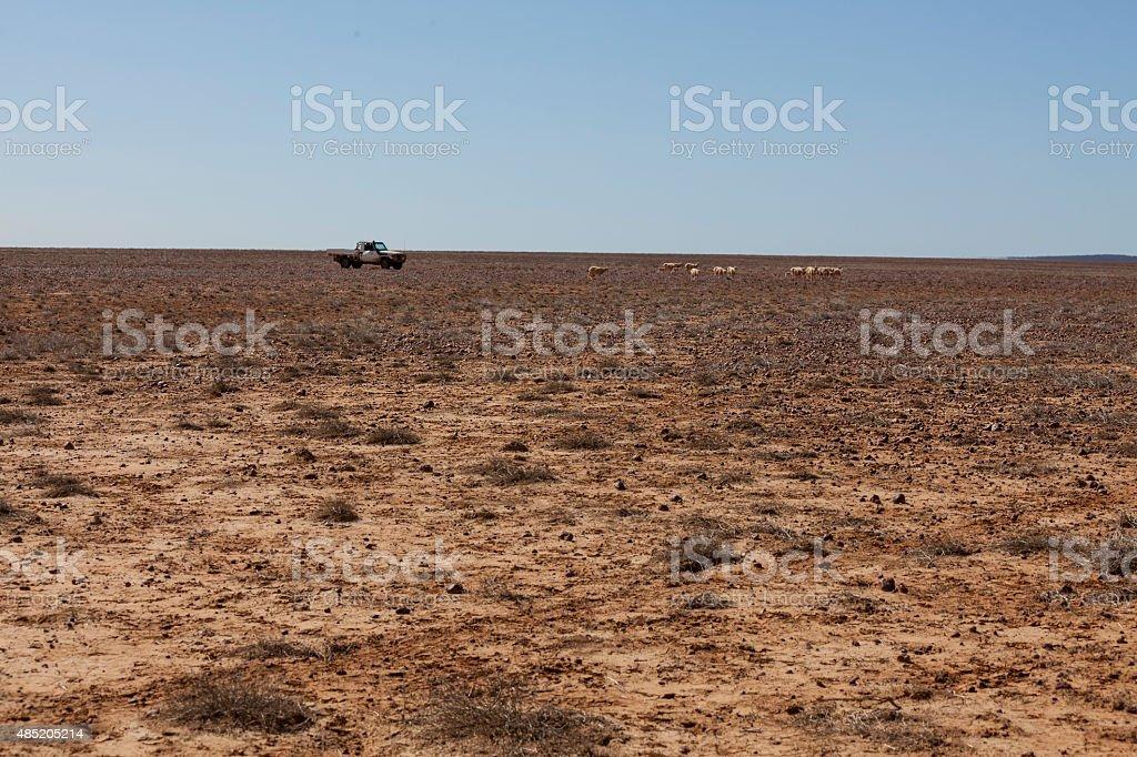 Australian farm landscape in drought stock photo