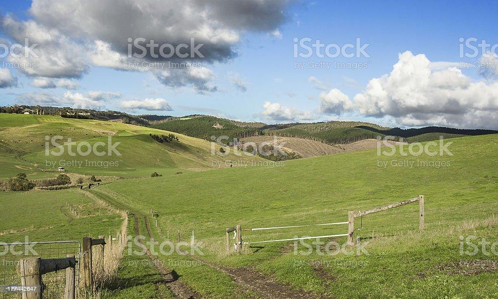 Australian farmland stock photo