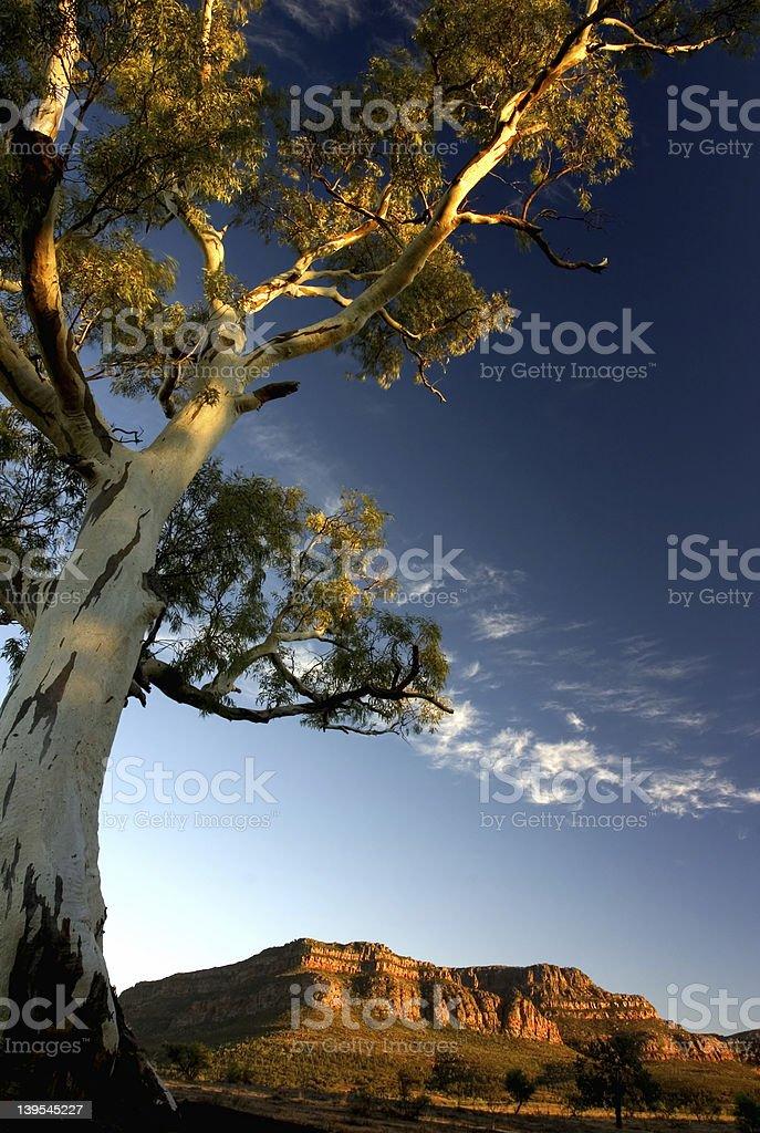 Australian Landscape royalty-free stock photo