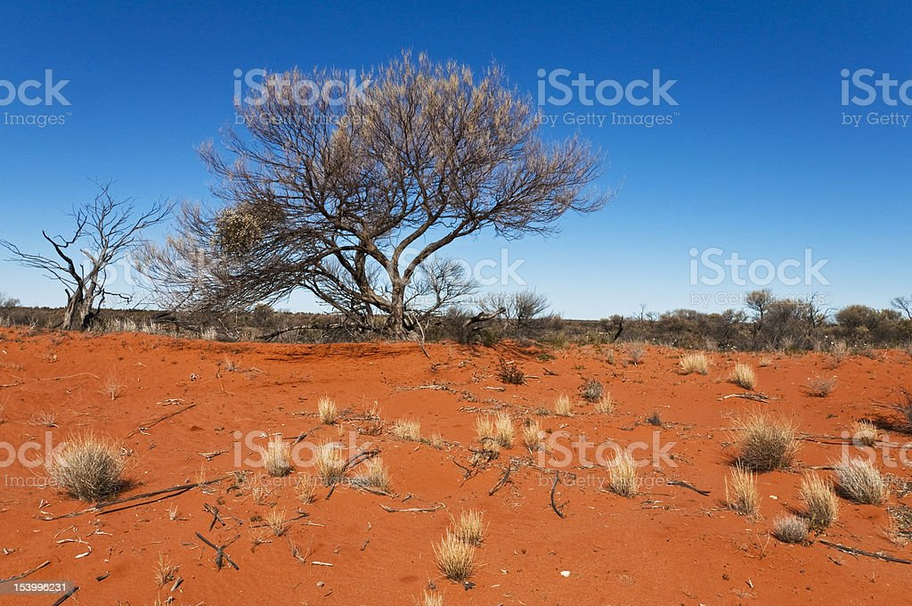 australian landscape stock photo