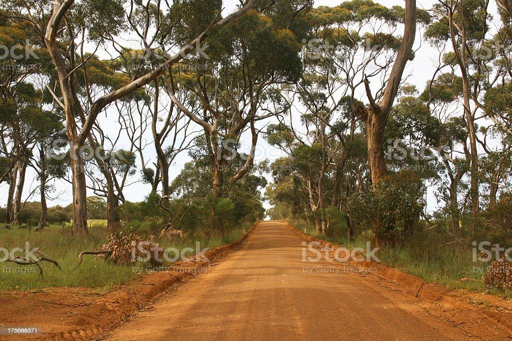 Australian outback, Australia, Oceania royalty-free stock photo