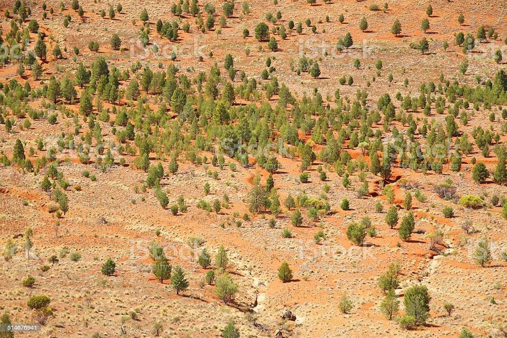 Australian outback, Flinders Ranges stock photo