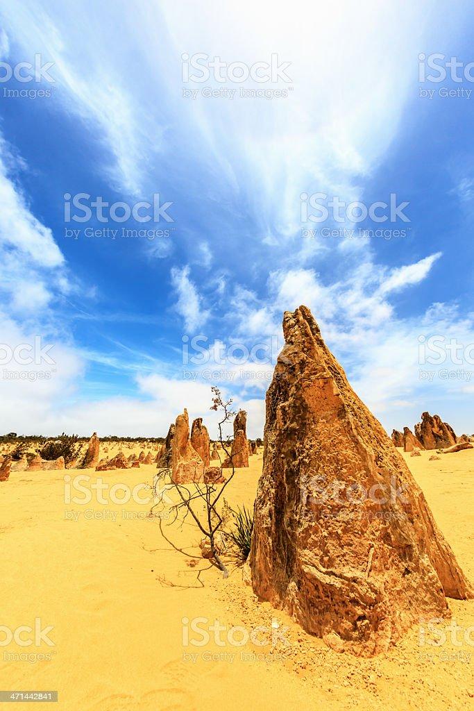 Australian Pinnacles Desert Nambung National Park stock photo