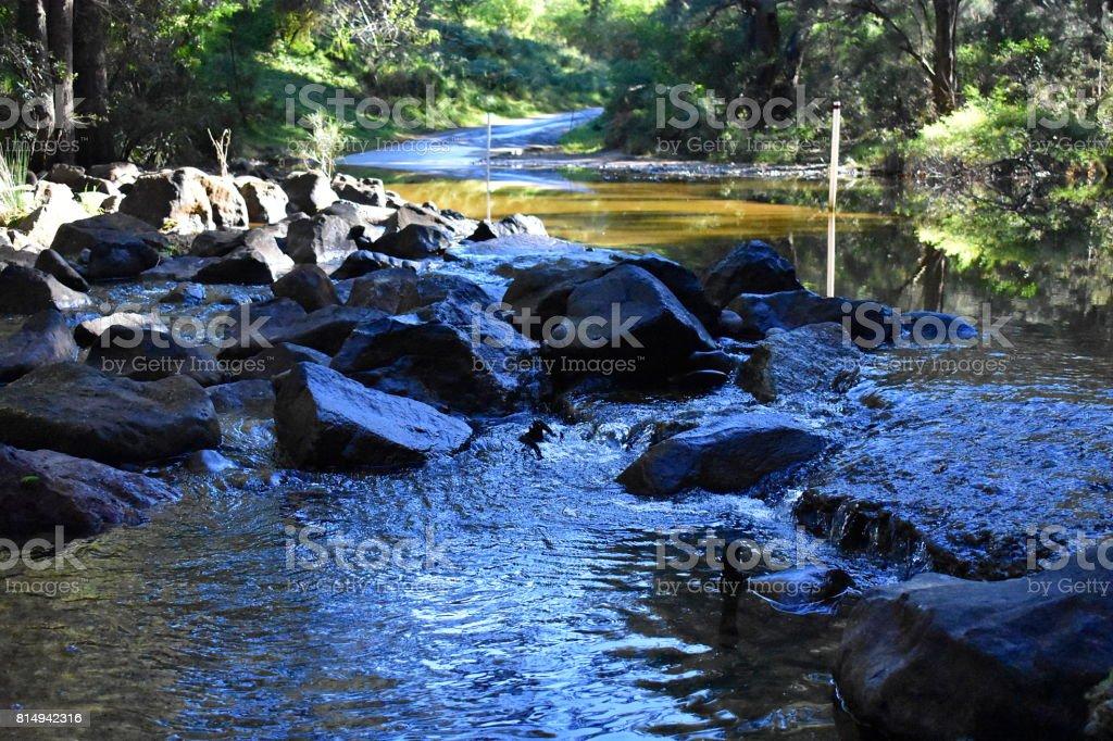 Australian River stock photo