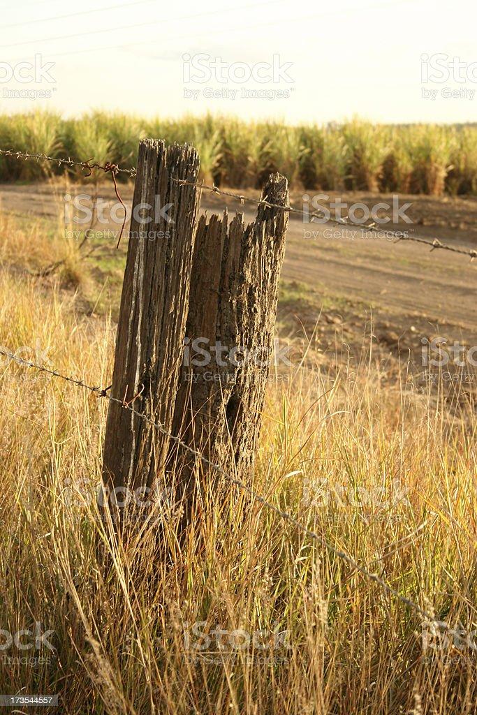 Australian Scenery royalty-free stock photo