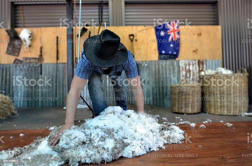 Australian Sheep shearer stock photo