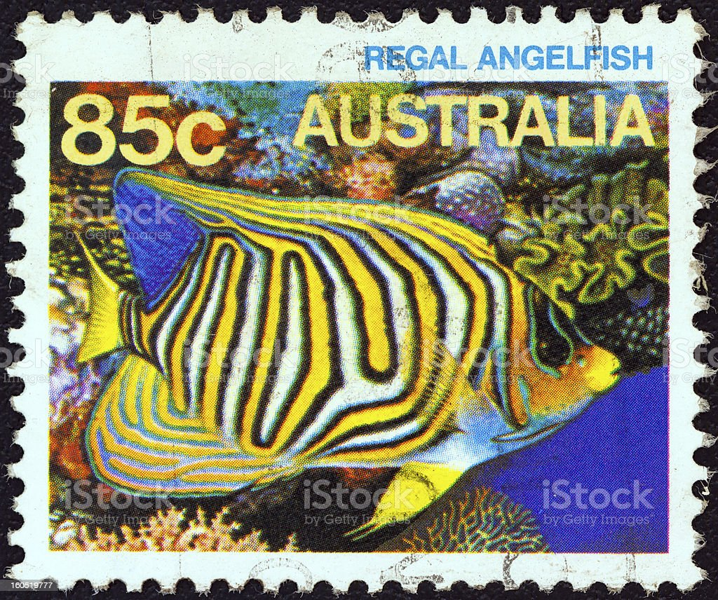 Australian stamp shows a Royal angelfish (1984) royalty-free stock photo