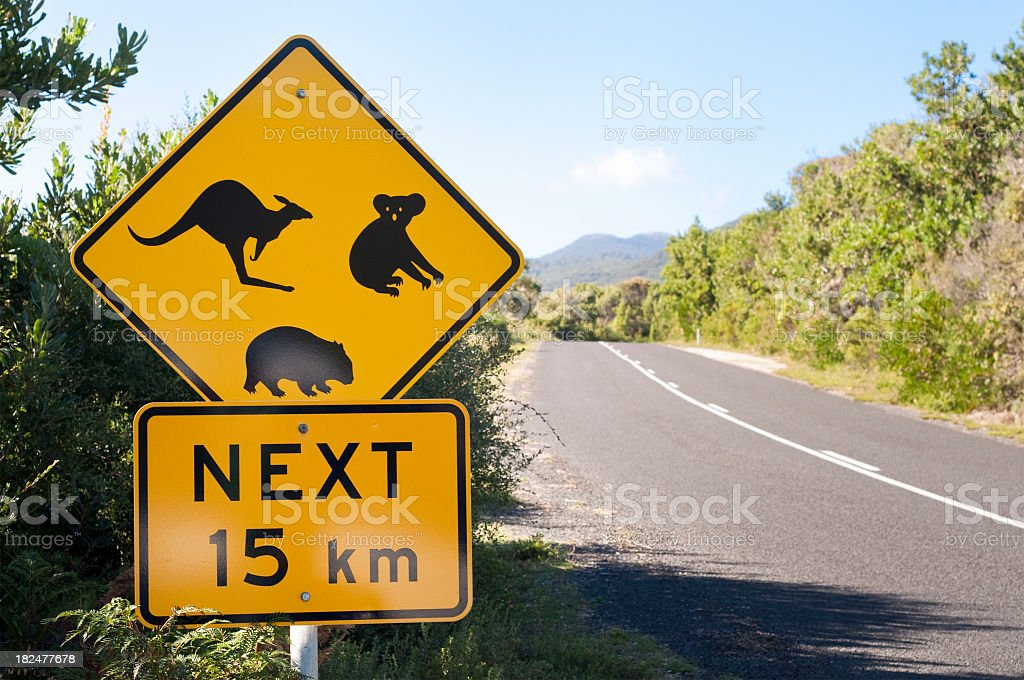 Australian Wildlife Road Sign royalty-free stock photo