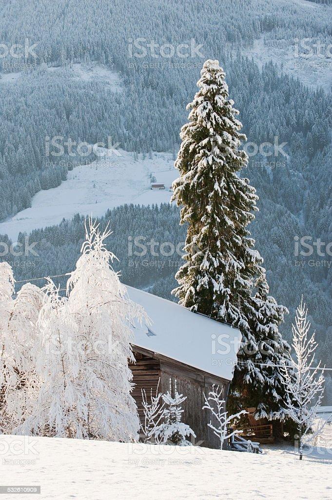 Austria, Salzburg, Snow-covered trees and hut in Altenmarkt-Zauchensee stock photo