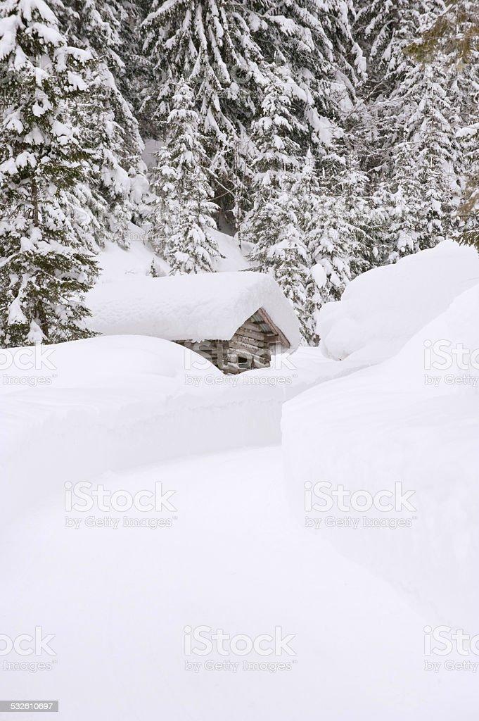 Austria, Salzburger Land, Log cabin in snow covered landscape stock photo