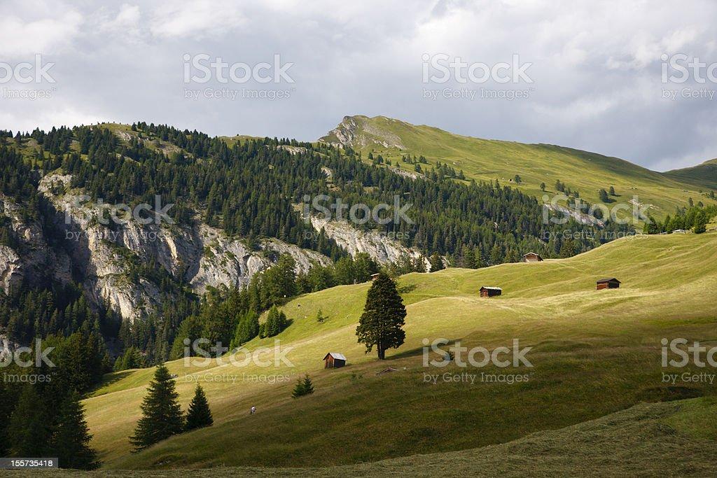 Austrian Meadow Mountain Landscape royalty-free stock photo