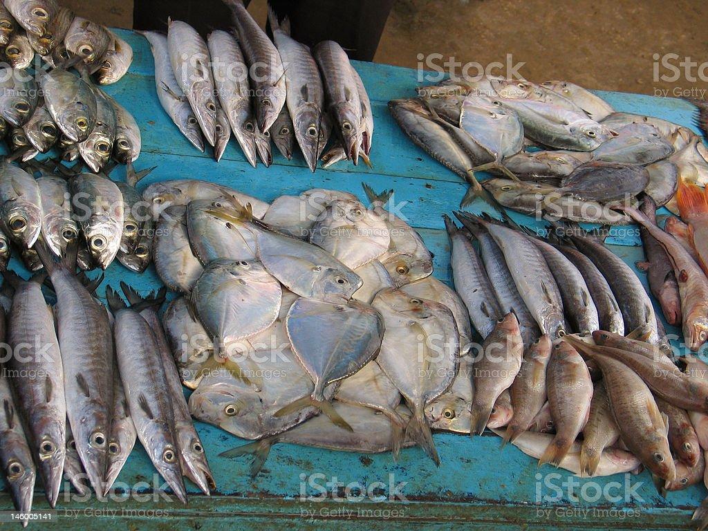 Authentic Ecuadorian Fish Market royalty-free stock photo