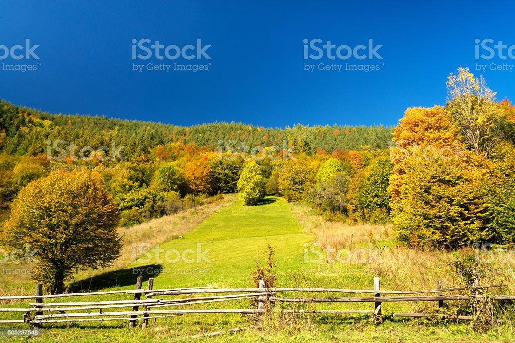 Autmn beautiful landscape stock photo