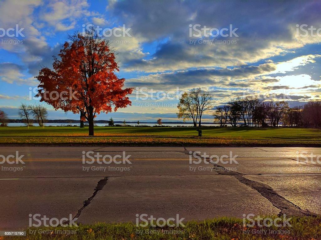 Autmn Tree Under Cloudy Blue Sky stock photo