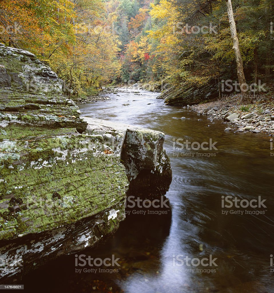 Autmun scene along the Litte River royalty-free stock photo
