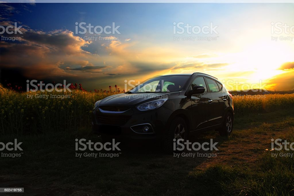 Auto im Rapsfeld mit Sonnenuntergang stock photo