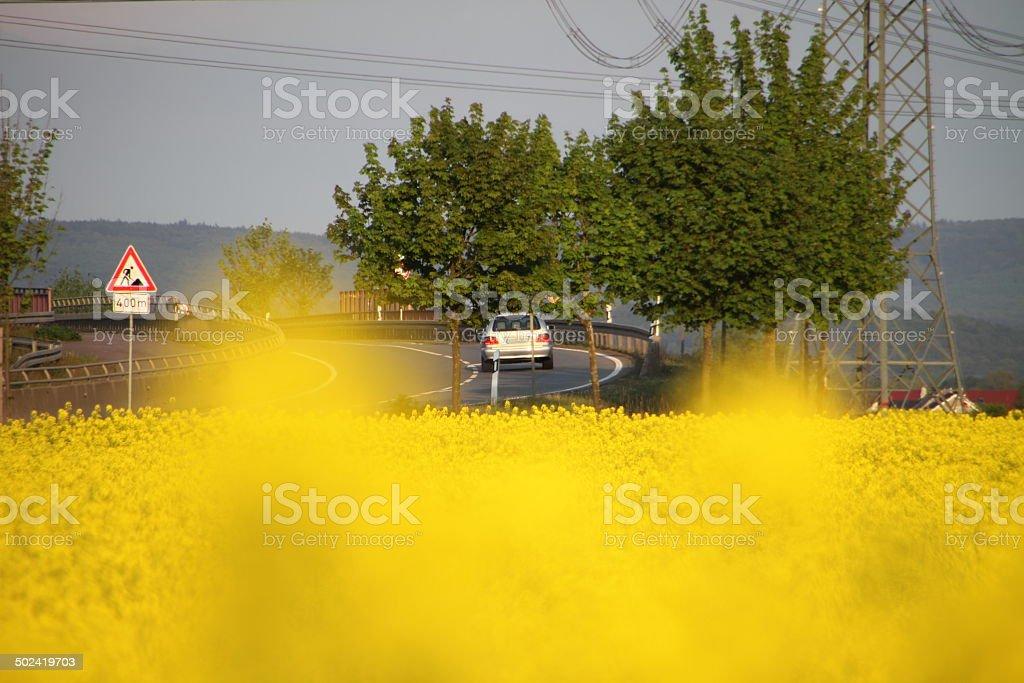 Auto Strassenverkehr Rapsfeld stock photo