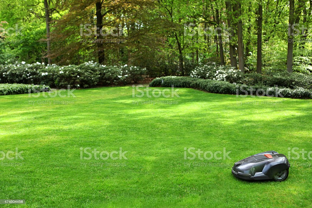 Automatic Lawn Mower Mowing Grass in a Garden stock photo