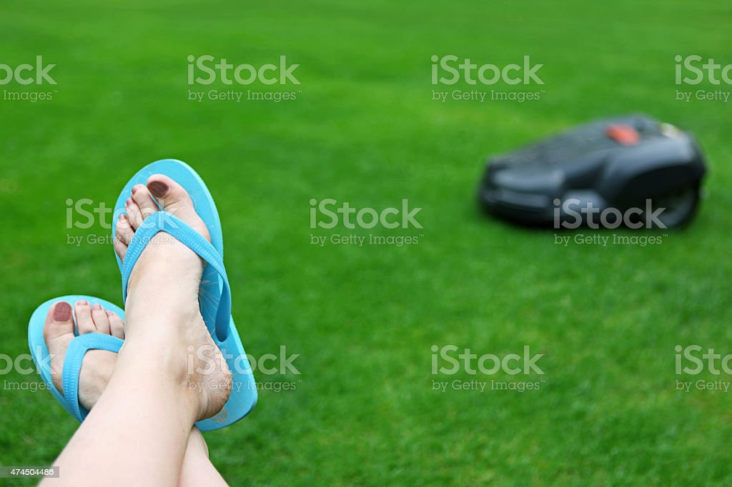 Automatic Lawn Mower Mowing Grass While You Rest stock photo
