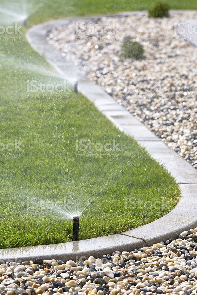 Automatic sprinklers on the grass stock photo