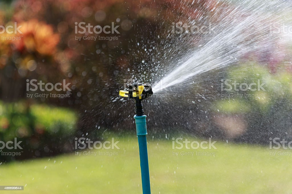 automatic water sprinkler in the garden stock photo