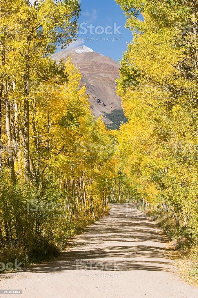Autum Color on Boreas Pass Colorado royalty-free stock photo