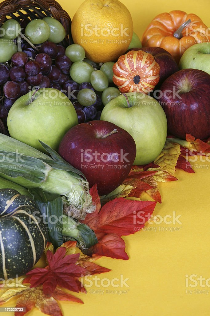 Autum Harvest royalty-free stock photo