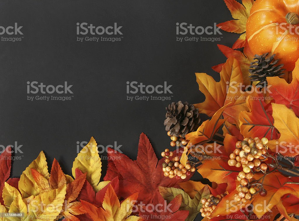 Autum Series royalty-free stock photo