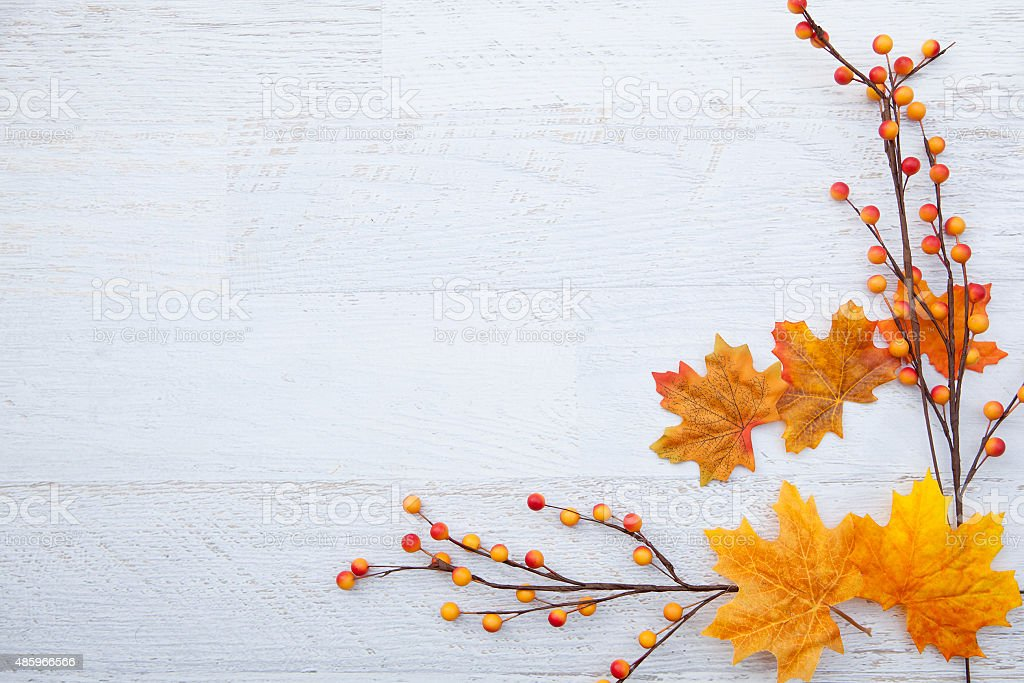 Autum Thanksgiving Background stock photo