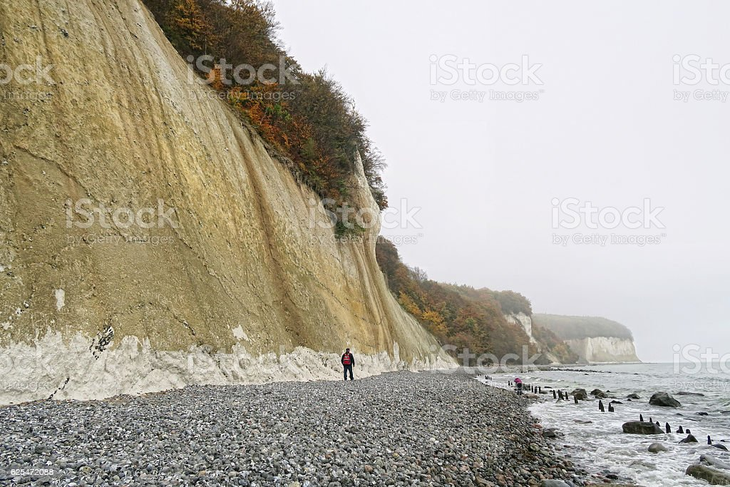 Autum time on chalk cliff of Rugen isle (germany) stock photo