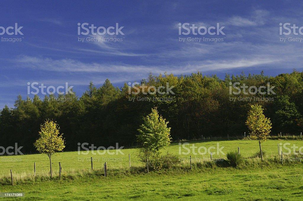 Autum-Landscapes2 royalty-free stock photo