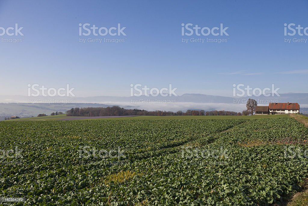 Autumn Afternoon in Vaud with Jura and Farmhouse royalty-free stock photo