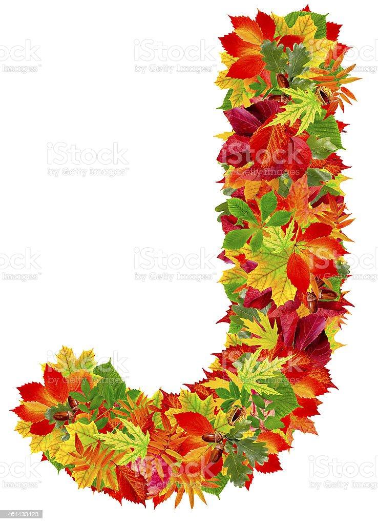 J, autumn alphabet royalty-free stock photo