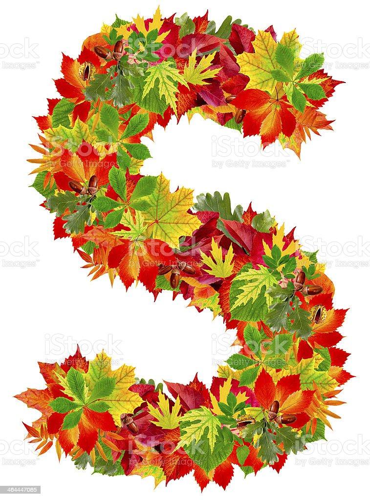S, autumn alphabet royalty-free stock photo