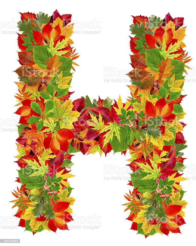 H, autumn alphabet royalty-free stock photo