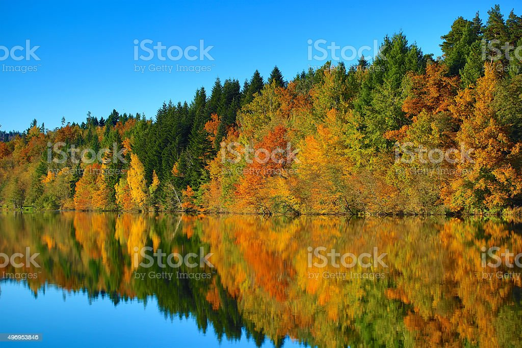 Autumn and Nature stock photo