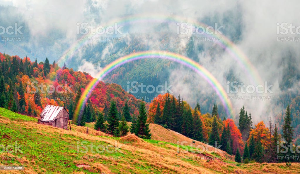 Autumn and winter together stock photo