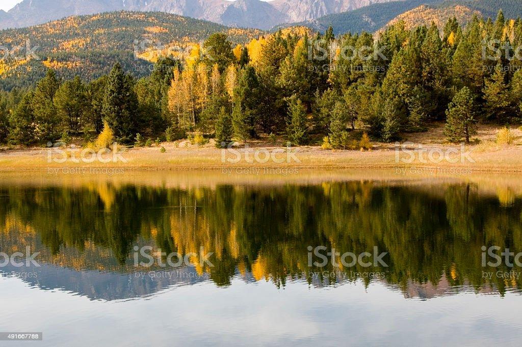 Autumn Aspen at Crystal Creek Reservoir Pikes Peak stock photo