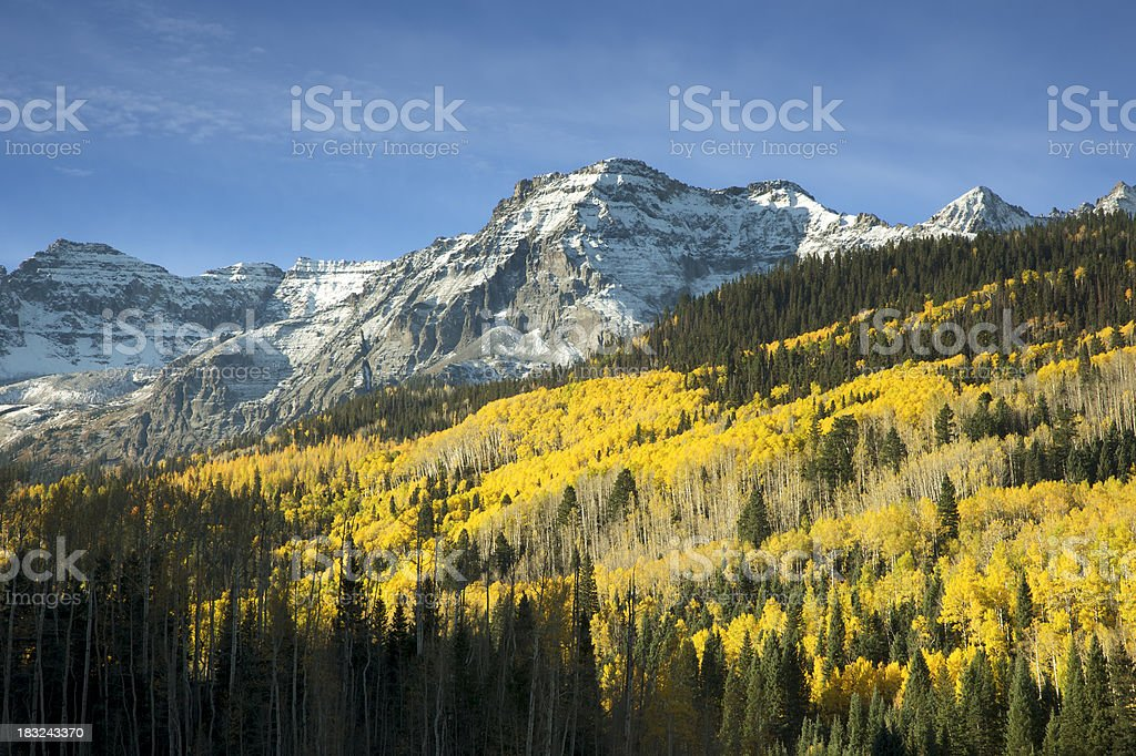 Autumn Aspen Leaves and Snow Covered Cliffs near Telluride, Colorado stock photo