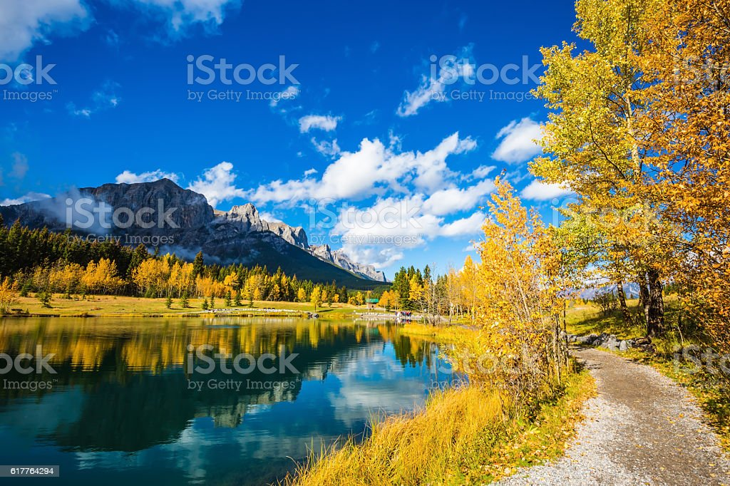 Autumn aspens reflected in the water stock photo