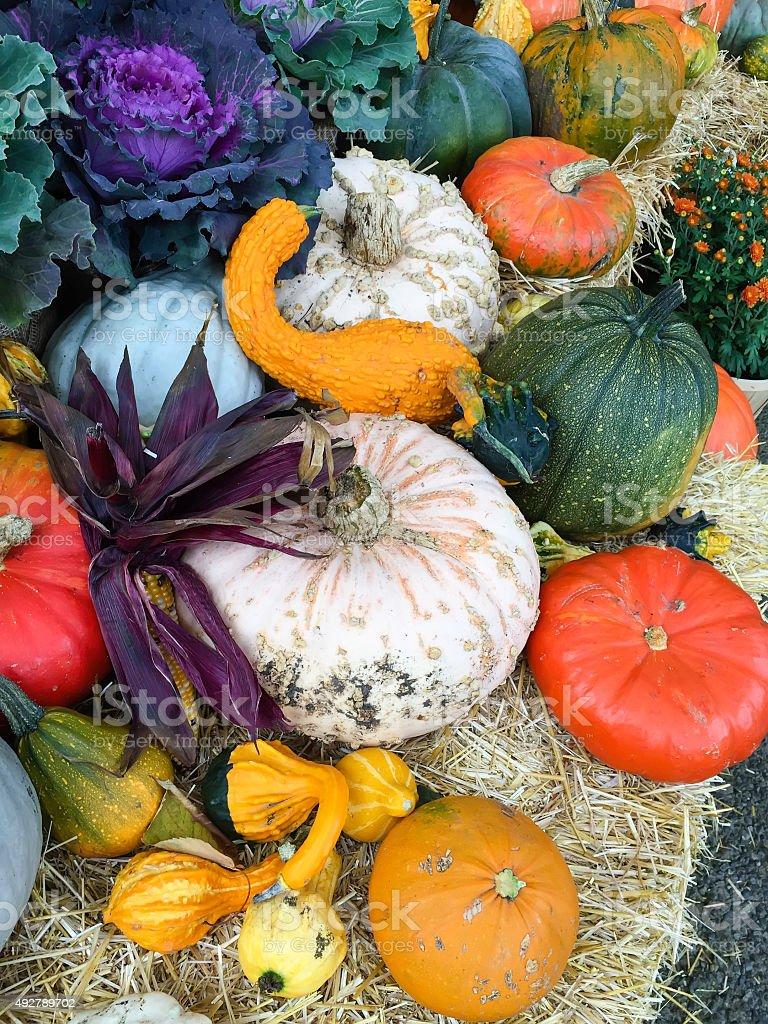 Autumn at a glance stock photo