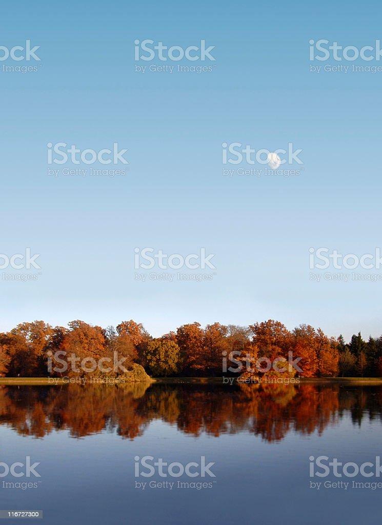 Autumn at a lake royalty-free stock photo