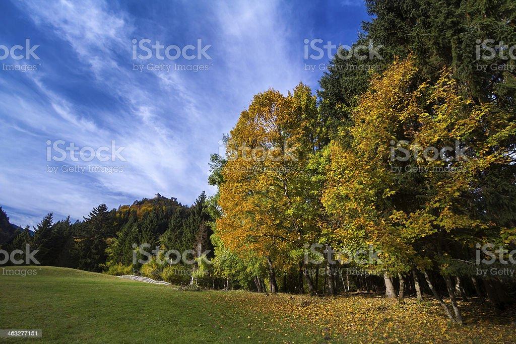Autumn at Ehrenberg stock photo