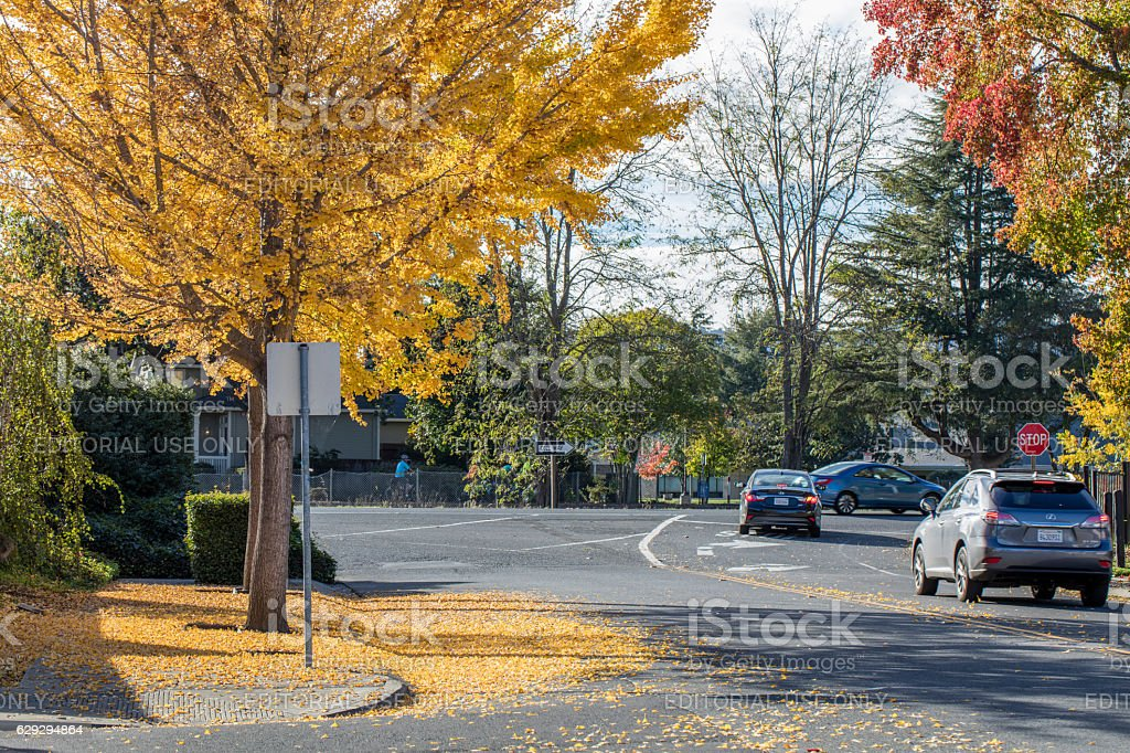 Autumn at Napa resident area , Napa, California stock photo