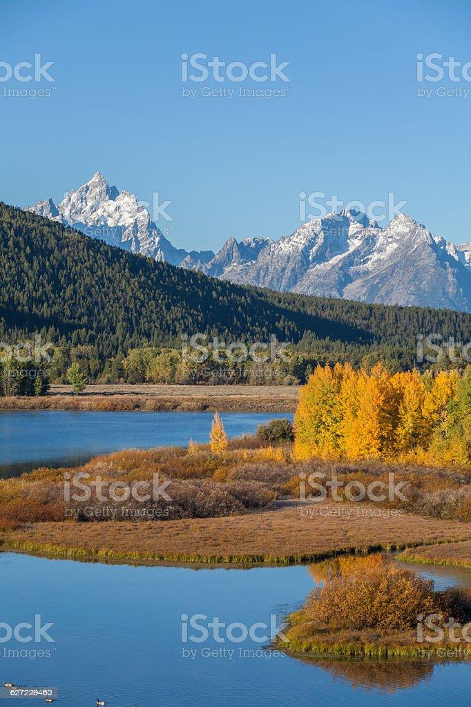 Autumn at Oxbow Bend stock photo