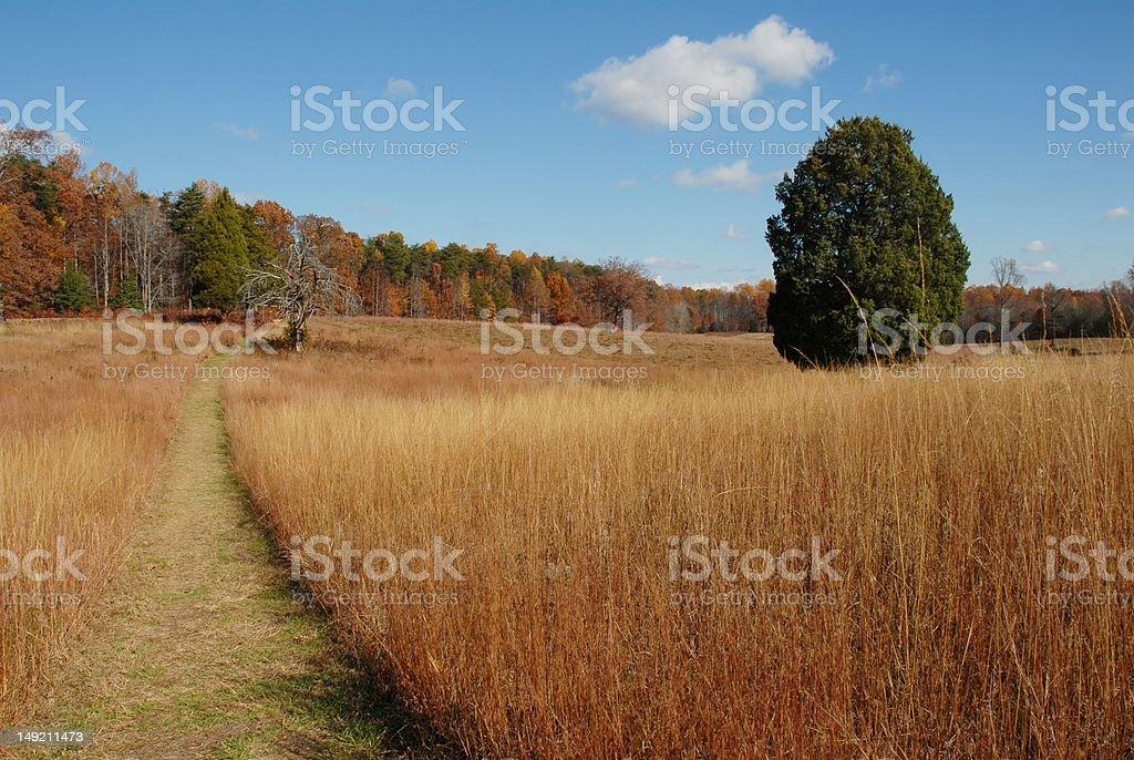 Autumn at Spotsylvania stock photo