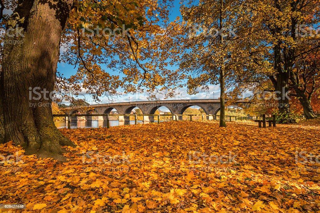 Autumn at the Tyne Green Riverside Park stock photo